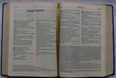 biblia pierwszego kościoła pdf chomikuj